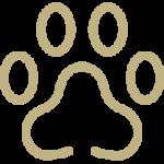 Icon poot